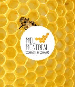 Collision Miel Montréal