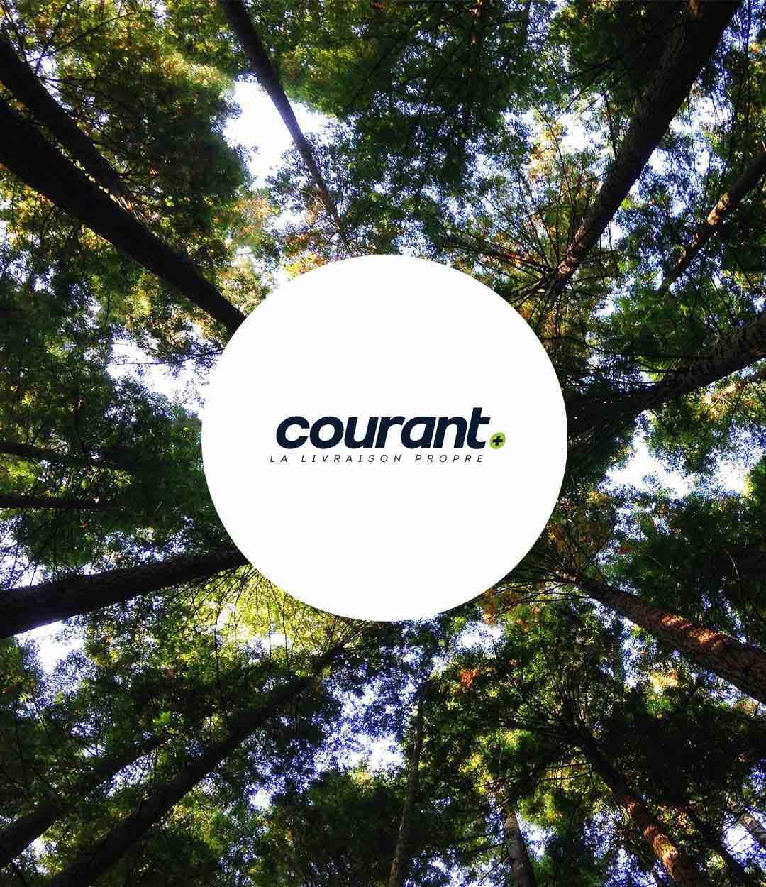 Organisation Courant Plus
