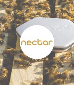 Organisation nectar