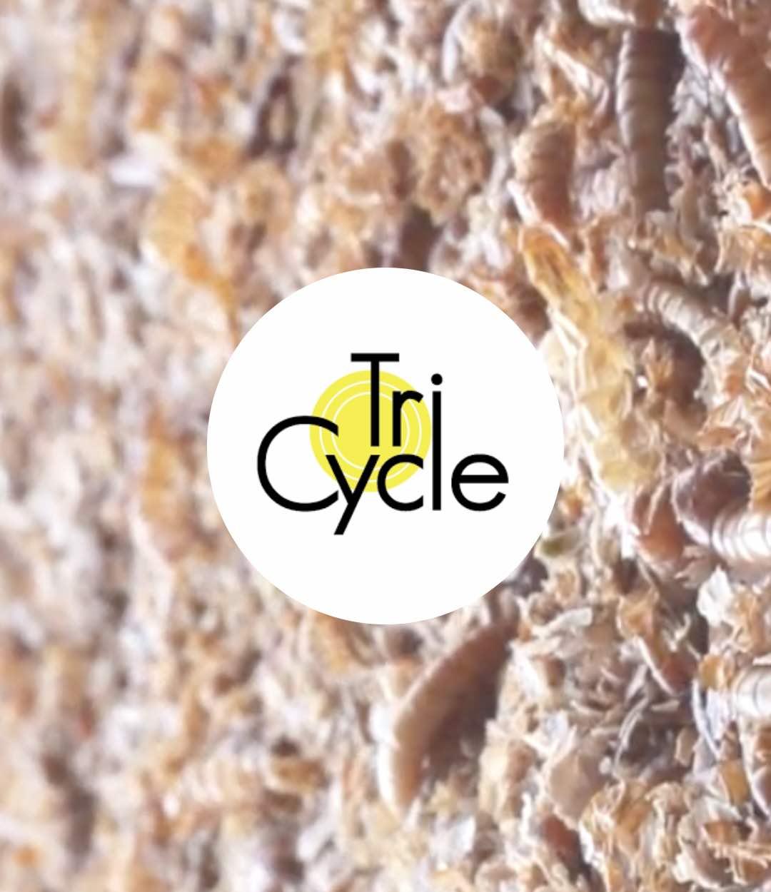 Accélération Tricycle