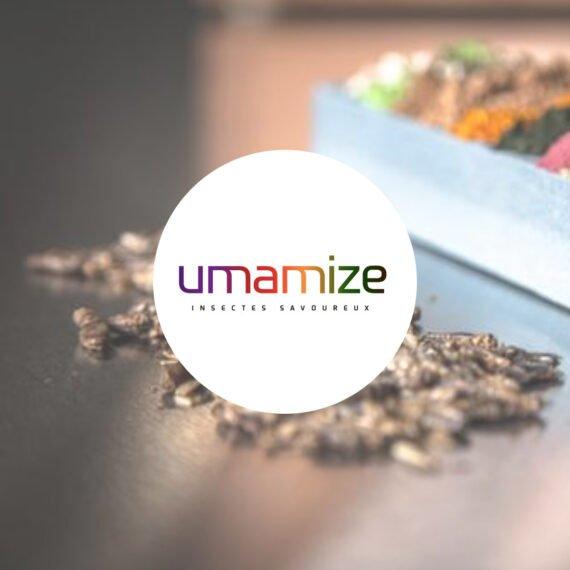 Organisation Umamize