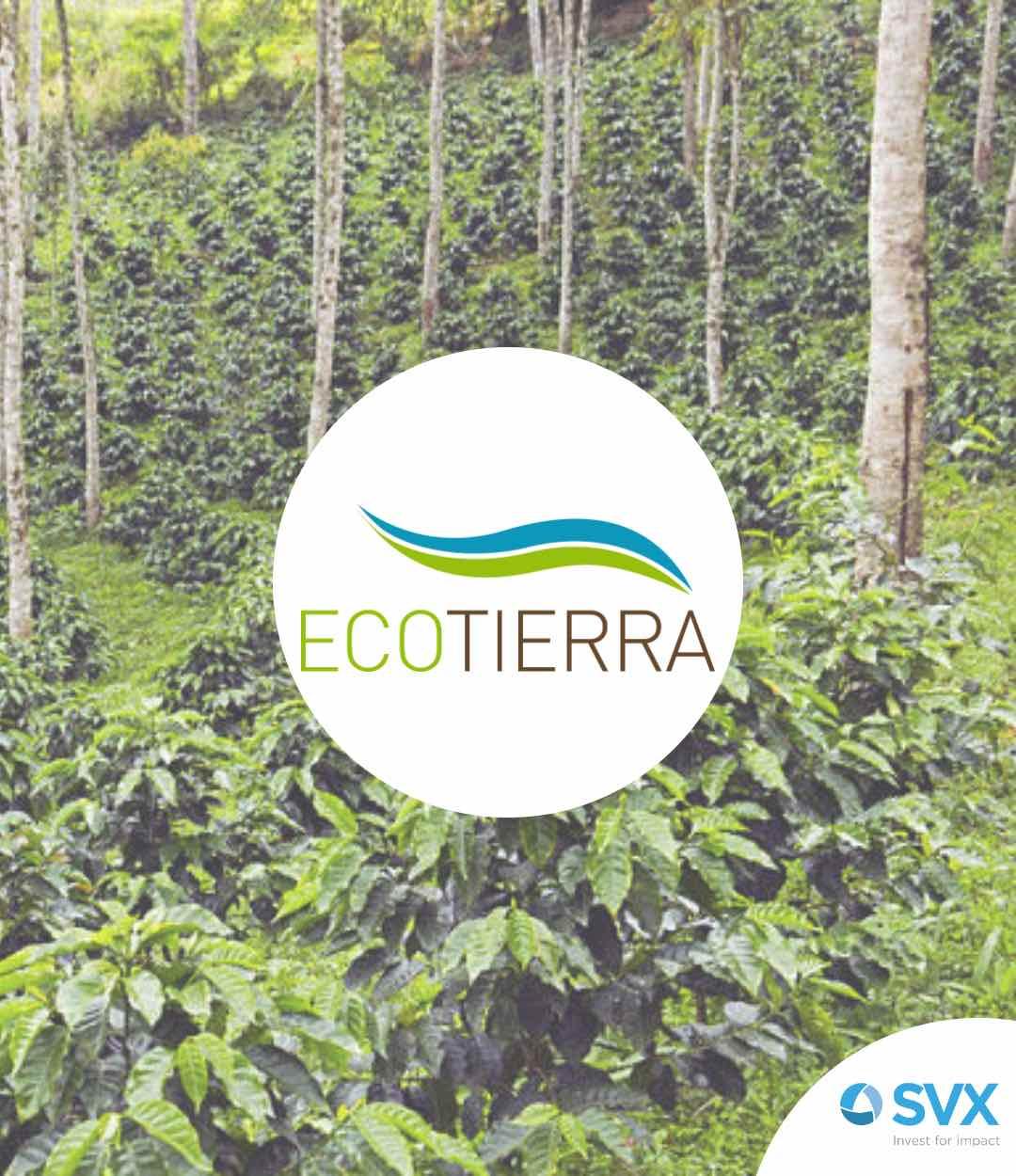 Transformation Ecotierra